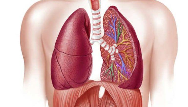 Sintomas como falta de ar, tosse e dificuldades respiratórias podem indicar DPOC